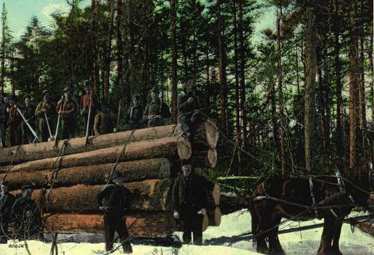 Logging Industry Ponhook NS